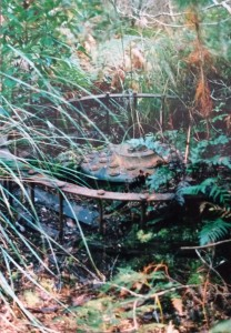Metal wheel at the Higgs/Sunrise mine site in 1993. In his archaeological report, Parry Kostoglou suggests this could be part of an ore disintegrator.