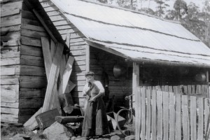 Louisa Brown with a pet wallaby, January 1910. This appears to be the same main hut photographed by Montgomery in 1901. Ron Smith photo courtesy of the late Charles Smith.