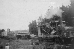 Bush engineering. The Marshall loco (above), seen here hauling a load of blackwood, was a triumph of improvisation.