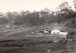 The Middlesex Station huts in February 1905, with Jacky, Linda Brown and two children standing in front of the second (mustering) hut. The hut occupied by the family can be seen at the extreme left in the left-hand photo, set well away from the others. The curl of smoke from the distant hut confirms the location of the chimney at its rear. Ron Smith photo courtesy of the late Charles Smith.
