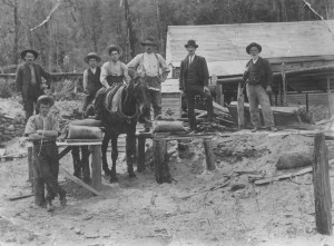 Cornish tin miner Anthony Roberts (right) operating a later tin mine, Weir's Bischoff Surprise, in the North Bischoff Valley. Photo courtesy of Colin Roberts.