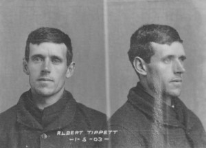 picture-8-gd63-1-3-albert-tippett-1903-page_2537-crop