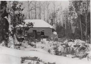 The deserted Davis house at Black Jack, Cradle Mountain road, August 1925. Ron Smith photo courtesy of the late Charles Smith.