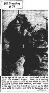 Luke Etchell posing before the Guildford skin sale in 1946. Winter photo from the Examiner, 1 August 1946, p.1.