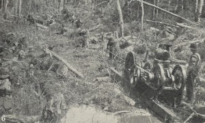 Draining the Welcome Swamp, 1923. From the Weekly Courier, 6 September 1923, p.21